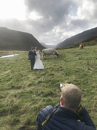 Highland Elopement Photographer with Highland Cow in Glen